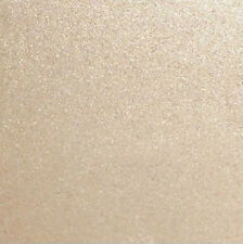 """Scrapbooking Shimmer Papers - 10 Sheets 12"""" X 12"""" PS15"""