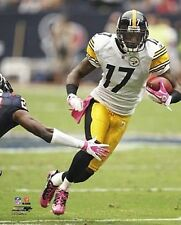 "MIKE WALLACE ""Pittsburgh Steelers"" LICENSED poster picture 8x10 photo"