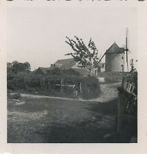 PHOTO ANCIENNE - VINTAGE SNAPSHOT - MOULIN À VENT ARBRE - WINDMILL TREE