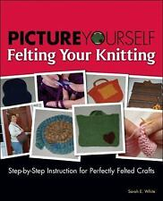 Picture Yourself Felting Your Knitting (Picture Yourself)