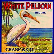 Nocatee Florida White Pelican Orange Citrus Fruit Crate Label Art Print