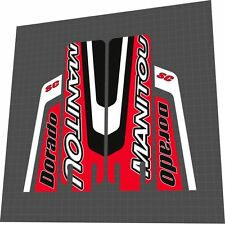 MANITOU DORADO SC 2003 DECAL SET