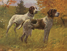 GERMAN WIREHAIRED POINTER DOG GREETINGS NOTE CARD TWO LOVELY STANDING DOGS
