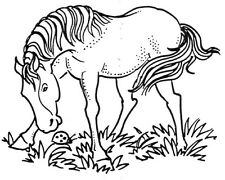 Unmounted Rubber Stamps, Equine, Equestrian, Animals, Horses, Ladybug & Horse