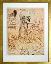 Study of the Physiognomy by Leonardo da Vinci. Art Print Poster. Gold Frame