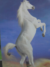 ICON! White Horse! 3D Picture! Poster! Lenticular! Animals! 2 pictures in 1!
