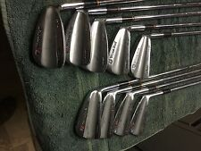 Wilson Staff FG53 Gooseneck 2-pw irons w/s300 dynamic gold shafts 5iron=38in