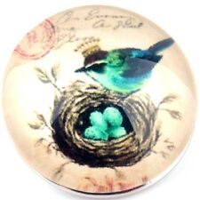 Snap button Blue bird nest eggs postage stamp 18mm charm chunk