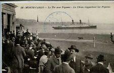 CP Monaco - Monte-Carlo - Le Tir aux Pigeons - Le Chien rapportant les Pigeons