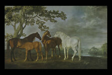 A3 Box Canvas 402038 Mares And Foals In A Landscape George Stubbs