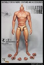 1/6 ZC Toys Accessory Set - Emulated Seamless Muscular Body 2.0 For Hot Toys Dam