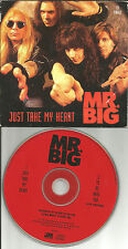 Eric martin MR. BIG Just take my heart / to be with you LIVE LIMITED CD single