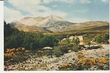 Vintage unused Scotland Postcard Ben Eighe Torridon Wester Ross, 3893