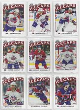2015-16 St. John's IceCaps update  set