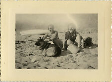 PHOTO ANCIENNE - VINTAGE SNAPSHOT - CHIEN BERGER ALLEMAND PLAGE - DOG BEACH 1951