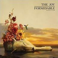 Wolf'S Law - Joy Formidable - CD New Sealed