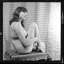 "Vintage Nude 2.25"" Negative Busty Amateur - Original Harrison Marks Photo HM7.6"