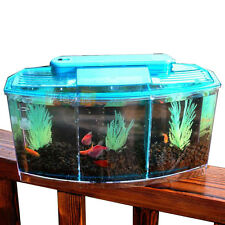 3 Compartment Acrylic Fish Shrimp Tank Small Aquarium with LED Light Sky Blue