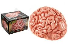 Large 18cm Original Urban Zombie Brain Money Bank Gift Box Novelty Piggy Bank