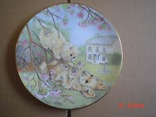 Lovely Royal Worcester Crompton And Woodhouse TOPSY TURVY Spaniel And Kitten