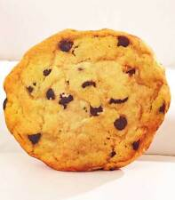 Novelty Food Shaped Pillow Chocolate Chip Cookie NEW