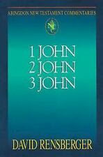 1 John 2 John 3 John (Abingdon New Testament Commentaries)