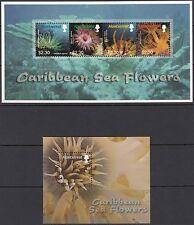 """Montserrat:2006 mer des Caraïbes """"fleurs"""" sheetlet + m / feuille sg1316-19 + ms1320 neuf sans charnière"""