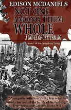Not One among Them Whole : A Novel of Gettysburg by Edison McDaniels (2013,...
