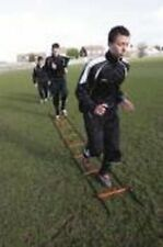 Precision Training 2 Mtr Agility Speed Ladder Football Rugby Hockey Coaching