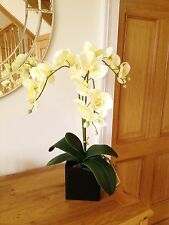 ARTIFICIAL LARGE SILK CREAM POTTED ORCHID PLANT WITH LEAVES IN BLACK PLANTER