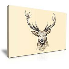 Deer Stag Head Animals Canvas Wall Art Picture Print 76x50cm 11