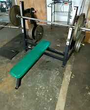 Flex Fitness Commercial Bench Press w Plate Storage