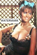 "Claudia Cardinale 4""x6"" super busty lacy black dress picture 4""x6"" photo n"