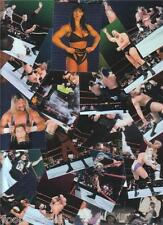 1999 WWF SMACKDOWN Chromium 88 Card Set Wrestlers + Pretty Gals + Refs + more