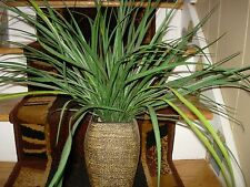 "LARGE FAUX PLANT IN WRAPPED WOOD CONTAINER--11""  HIGH + PLANT-18"" HIGH--#Y40"