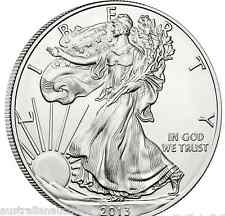 WALKING LIBERTY SILVER BULLION DOLLAR USA AMERICAN EAGLE 1oz 2013 COIN INVEST
