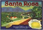 *Original* SANTA ROSA *Older* Orchard Oxnard Ventura Lemon Label NOT A COPY