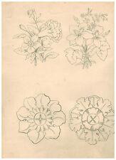 Bleistift Schumann Otto Wassermann Arzberg Blume Serie Zeichnung rarität selten