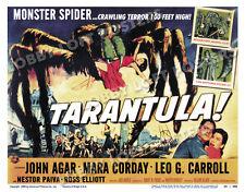 TARANTULA LOBBY TITLE CARD POSTER 1955 JOHN AGAR MARA CORDAY