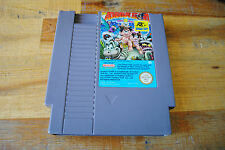 Jeu THE ADVENTURE ISLAND PART II TWO pour Nintendo NES