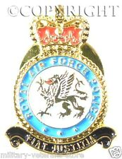 RAF ROYAL AIR FORCE POLICE REGIMENTAL LAPEL PIN BADGE