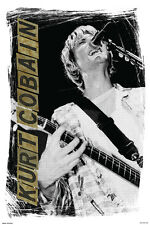 Kurt Cobain Singing 24x36 Poster Nirvana Smells Like Teen Spirit Apologies MTV!!