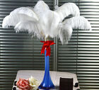 100Pc White/Black ostrich feathers wedding party decorations 10-12inch/25-30cm