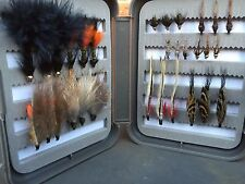 30 WET, NYMPHS FLIES OPENER COLLECTION  IN FLY BOX
