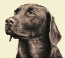 CHOCOLATE LABRADOR dog full counted cross stitch kit + all materials