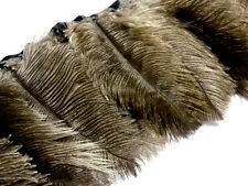 F133 PER 30cm-Oliver Brown Ostrich feather on fringe Trim Fascinator Material