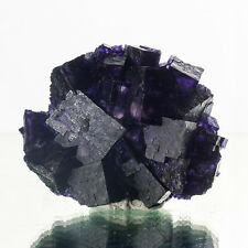"2.9"" Deep Violet w/Purple PHANTOM FLUORITE SharpCubic Crystals Illinois for sale"