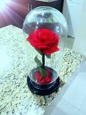 Beauty and The Beast enchanted rose replica