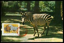 RUSSIA MK 1969 FAUNA ZEBRA BISON WISENT MAXIMUMKARTE CARTE MAXIMUM CARD MC h0632