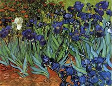 "Irises by Vincent Van Gogh, 8""x10"", Giclee Canvas Print"